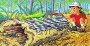 Let's Explore a Log